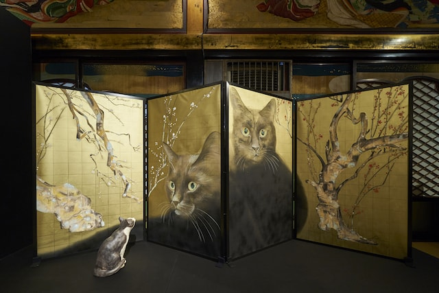 色鉛筆で描かれた秀作「紅白梅黒猫図」 by 目羅健嗣