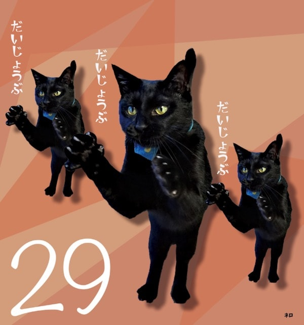 日めくりカレンダー「まいにち黒猫」に登場する黒猫2