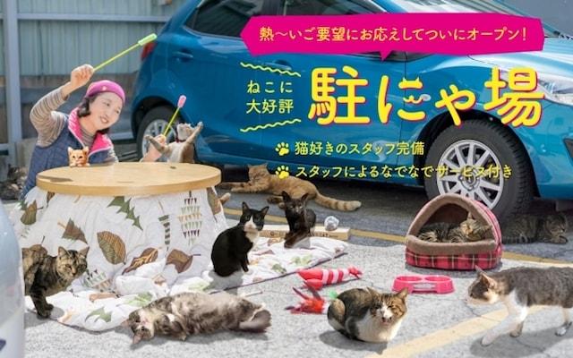 ネコ専用の「駐にゃ場」