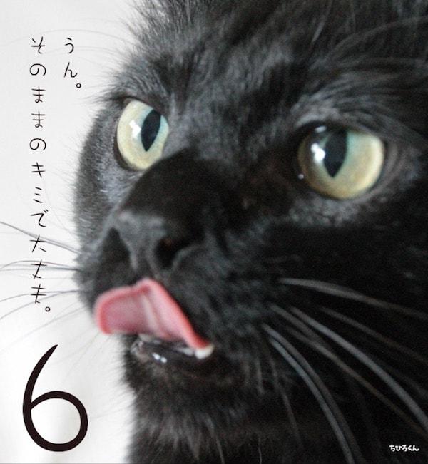 日めくりカレンダー「まいにち黒猫」に登場する黒猫3