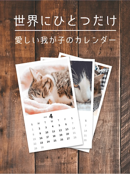 愛猫のカレンダー作成サービス by ねこすた