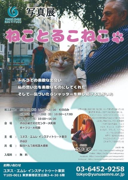 猫写真家・こがまゆ氏の作品を展示する「写真展 ねことるこねこ」@渋谷総合文化センター大和田