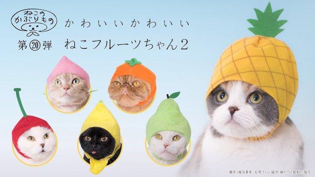 キタンクラブのカプセルトイ、猫用のかぶりもの「かわいい かわいい ねこフルーツちゃん2」