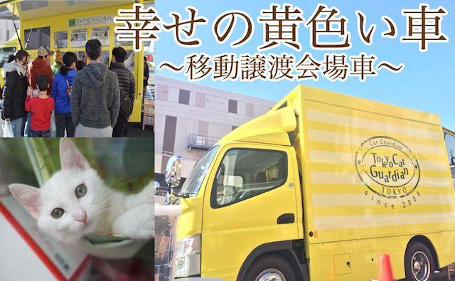 東京キャットガーディアンが運営する移動式の保護猫譲渡会場車「幸せの黄色い車」