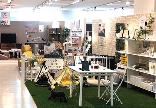 大塚家具の店内にあるペット向けの家具&インテリア提案コーナー