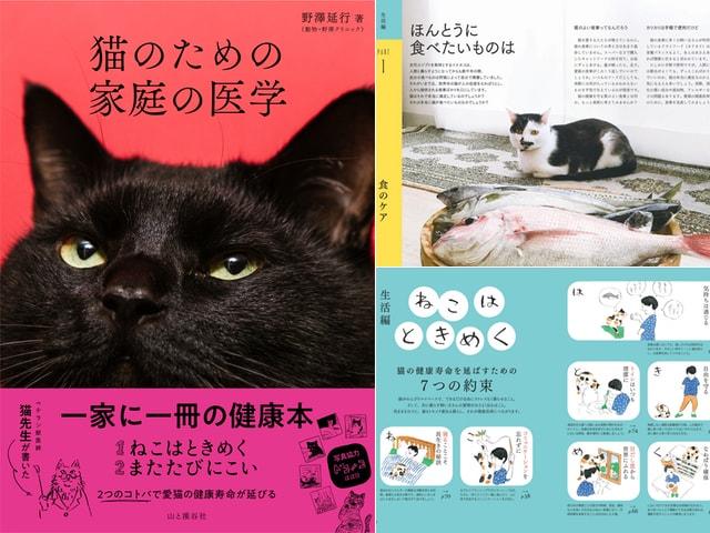愛猫や飼い主さんの疑問を獣医師が解説する「猫のための 家庭の医学」