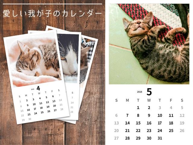 猫好き専用SNSアプリ「ねこすた」にカレンダー作成サービスが登場