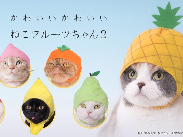 愛猫がパイナップルやラ・フランスに変身できるかぶりもの「ねこフルーツちゃん2」