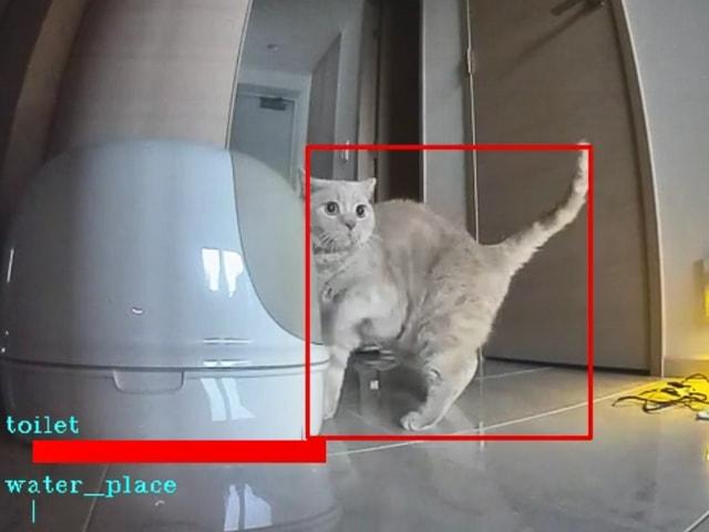 監視カメラの映像から犬猫のシーンだけを抽出してくれる「ペットみるん」