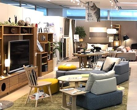 大塚家具のペット向け家具の展示風景