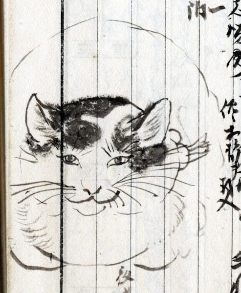 南方熊楠が描いた猫の絵 by 「熊楠と猫」展