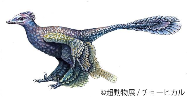 チョーヒカルの絶滅動物作品、ミクロラプトルグイ