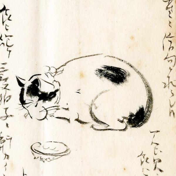 南方熊楠が描いた白黒猫の絵 by 「熊楠と猫」展