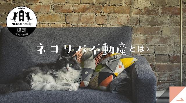 猫飼育可専門不動産仲介ウェブサイト「ネコリパ不動産」のイメージ