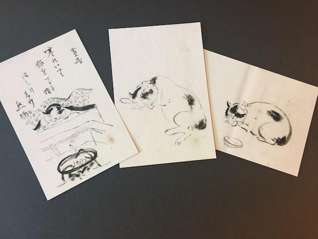 南方熊楠の猫の絵をデザインしたポストカード