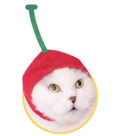 さくらんぼをモチーフにした猫用のかぶりもの