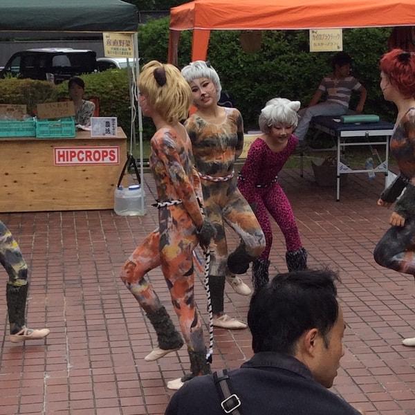 キャットダンスの様子 by 上杉(かみすぎ)ねこまつり
