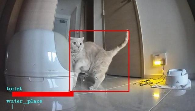 カメラの映像の中から猫が写っているシーンを抽出 by ペットみるん
