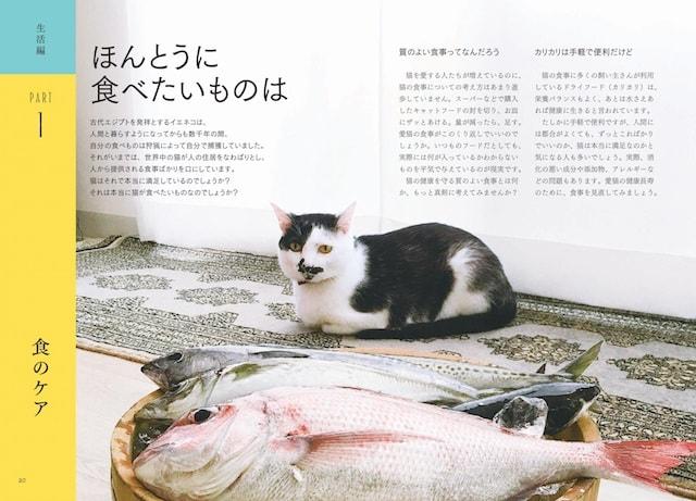 猫の食事のケアについて解説 by 猫のための 家庭の医学