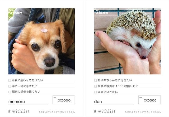 犬とハリネズミの飼い主さんのやりたいこと「#withlist」キャンペーン投稿例