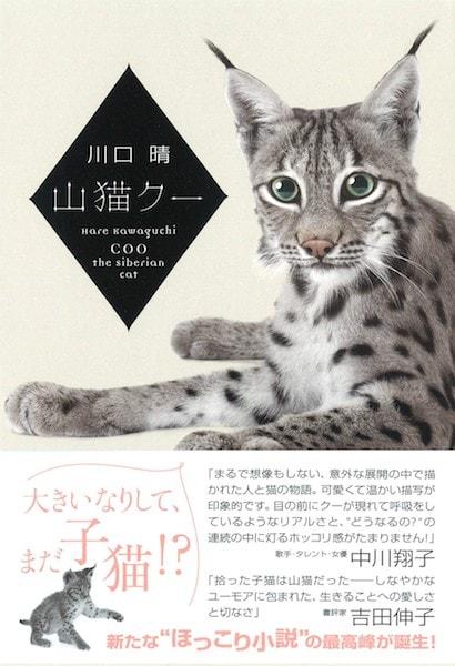 川口晴の小説「山猫クー」