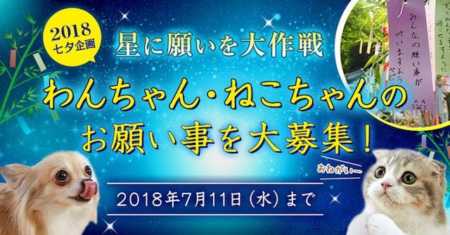 愛犬・愛猫すくすく祈願 星に願いを大作戦2018