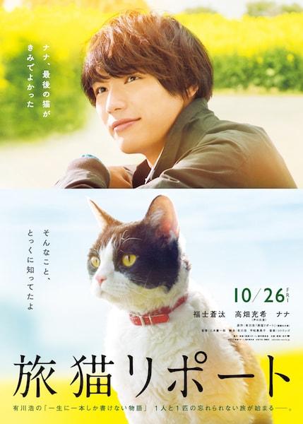 映画「旅猫リポート」のメインイメージ