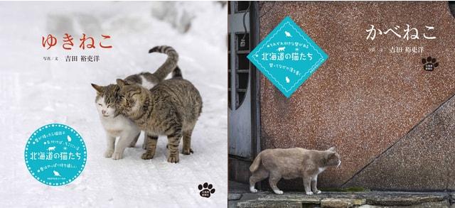 写真家・吉田裕吏洋さんの写真集「ゆきねこ」と「かべねこ」