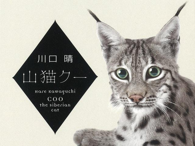 シベリアオオヤマネコと人間の心温まる物語を綴った小説「山猫クー」