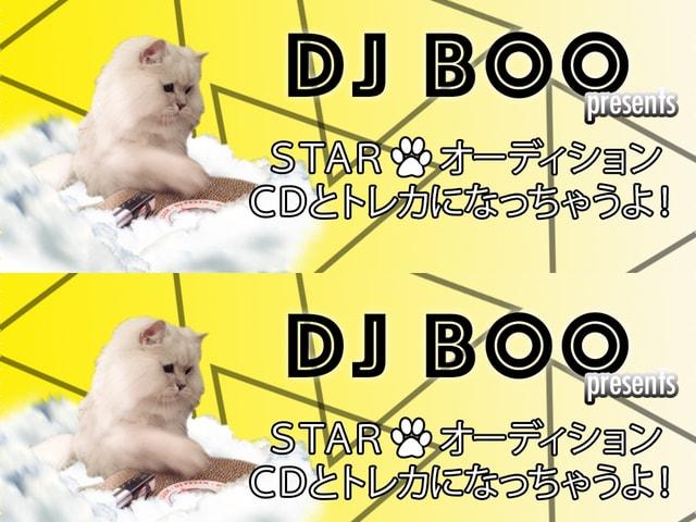 アトラスミュージック、CDジャケットに登場するモデル猫のオーディションを開催中