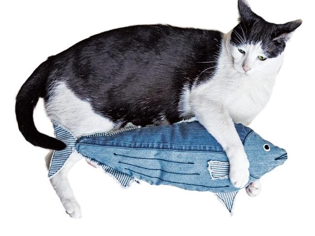 猫キックしたいニャ!デニム素材で出来たカツオ型クッションが登場