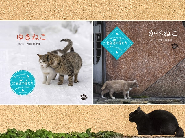 北海道のネコに密着した写真集が2冊同時に発売「かべねこ&ゆきねこ」