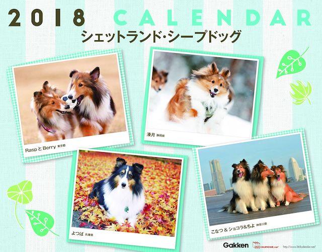 365カレンダー、犬バージョン