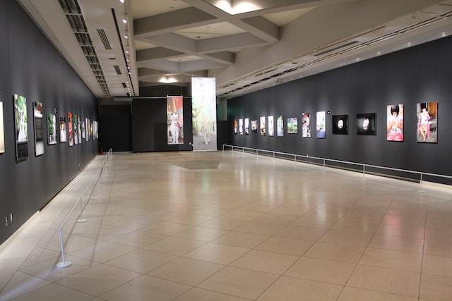 ねこ写真家 関由香さんの作品展示風景 by 笠間日動美術館
