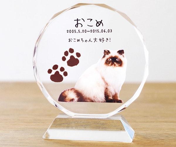 愛猫の写真と肉球マークが入った位牌