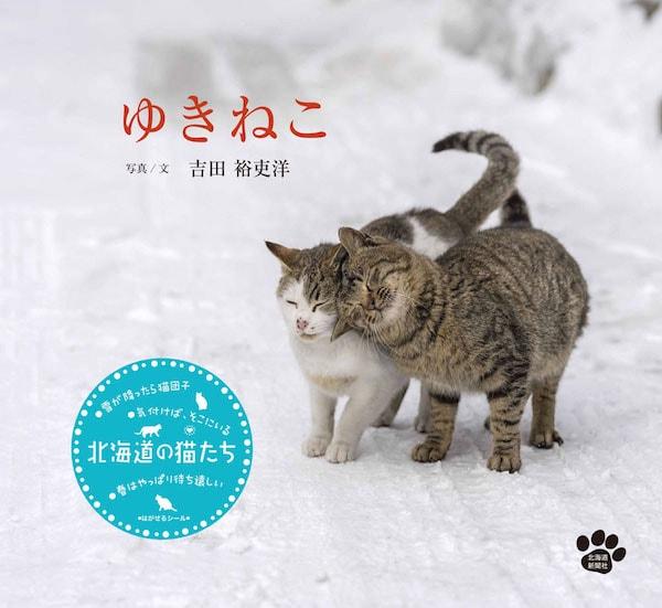 猫の写真集「ゆきねこ」の表紙