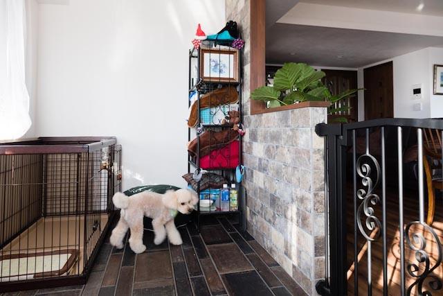 犬と暮らすためのリノベーション事例イメージ