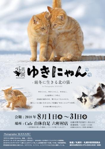 カメラマン・MANABUさんによる猫と雪のコラボ写真展「ゆきにゃん? -厳冬に生きる北の猫-」