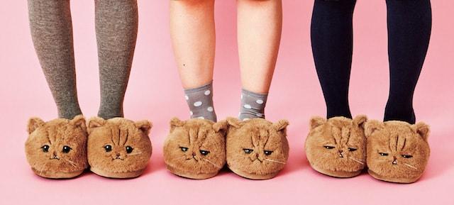 しょんぼり顔の猫「ふーちゃん」のスリッパ全3種