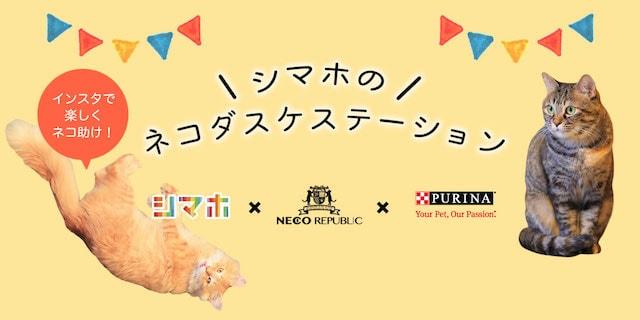 猫を救う「ネコダスケステーション」キャンペーン