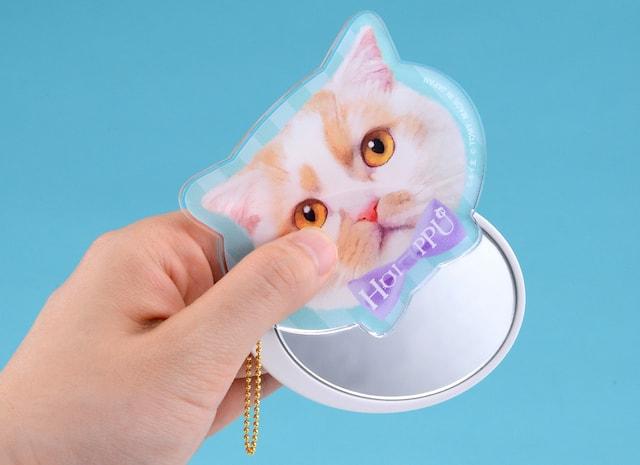 ちくわ柄の人気猫「ホイップ」のスライドミラー