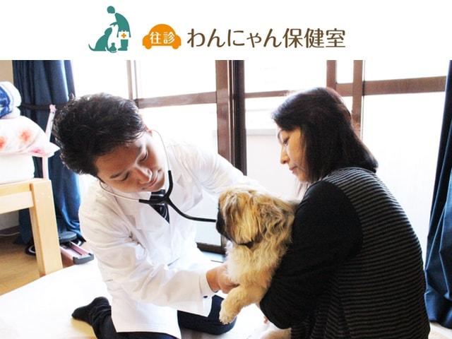 在宅のまま獣医療サービスを受けられる「わんにゃん保健室」がオープン