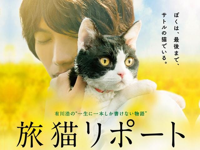 福士蒼汰と猫の息がピッタリ!映画「旅猫リポート」の新ポスターと予告編映像が公開