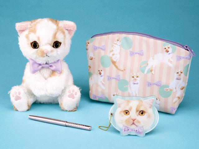 ちくわ柄の人気猫「ポイップ」のぬいぐるみとコスメ雑貨セットがタカラトミーから発売