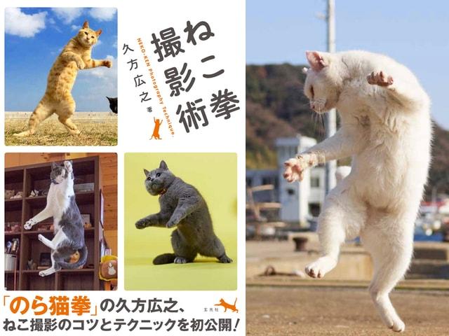 のら猫拳をマスターするニャ!話題のネコ写真家による解説本「ねこ拳撮影術」