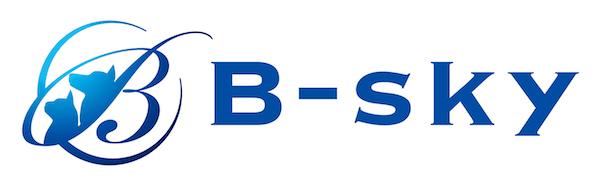 株式会社B-sky