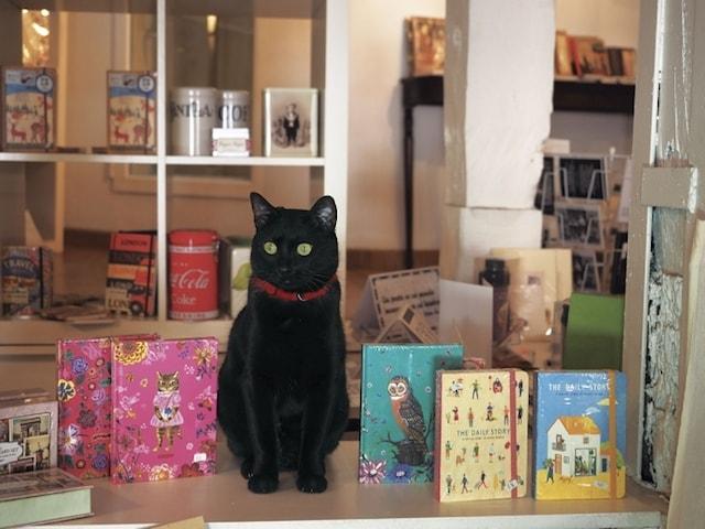 看板ネコの黒猫 by 岩合光昭の世界ネコ歩き2