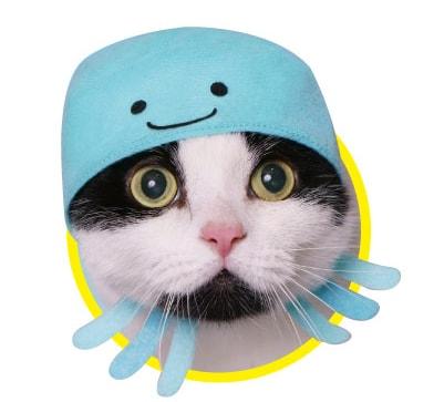 クラゲをモチーフにした猫用のかぶりもの