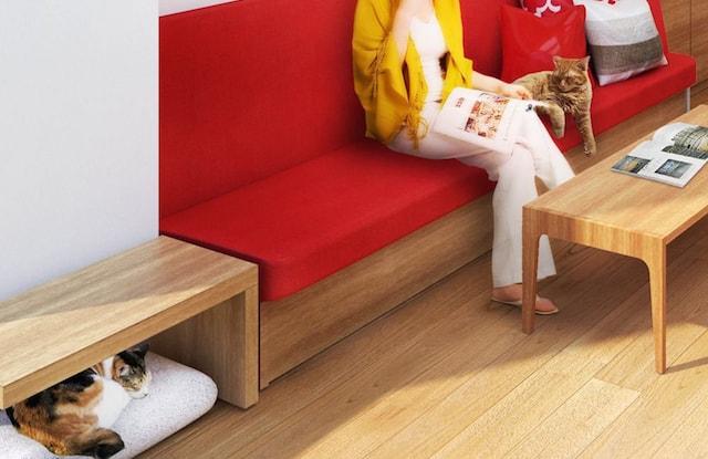 猫のリノベーションイメージ「猫が隠れられる収納ソファー」