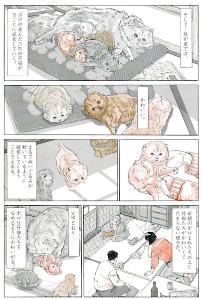 「犬を飼う そして…猫を飼う」の中身イメージ1